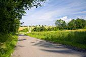 Asphalt Fields Road