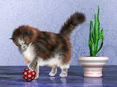 stock photo of molly  - Oscar a calico cat plays with a red ball on a purple marble floor - JPG