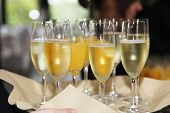 stock photo of flute  - Flutes of chilled white champagne or sparkling wine being carried on a tray at a catered event or celebration - JPG