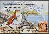 A stamp printed in Cuba shows Mustela nivalis (International Philatelic Exhibition Tembal 83)
