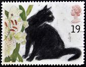 UNITED KINGDOM - CIRCA 1995: A stamp printed in Great Britain shows the Black cat and Lilium circa 1