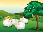 Illustration of sheeps in a beautiful nature