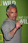 LOS ANGELES - JAN 3:  Cesar Millan arrives at the National Geographic Channels'