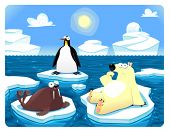 Polar scene. Vector and cartoon illustration