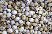 Quail eggs in asian market