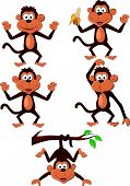 Funny monkey cartoon set