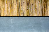 Half Bamboo Wall With Concrete