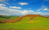 stock photo of apennines  - Farmhouses on the Slopes of the Apennines Italy - JPG