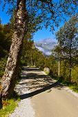 Road To Briksdal Glacier - Norway