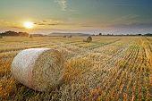Hay balle in sunset