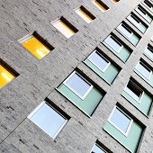 Windows of apartment building
