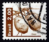 Postage Stamp Brazil 1982 Coconuts, Cocos Nucifera, Palm Tree