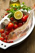 foto of redfish  - Redfish with tomatoes parsley garlic and olve oil - JPG