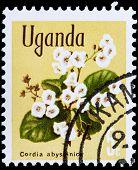 Post Stamp From Uganda