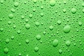 Water drops background in green