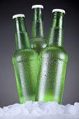 Beer Trinity