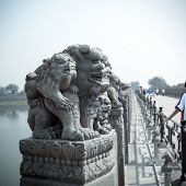 Ancient Stone Lion Statue
