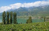 Lake Caldaro,South Tyrol,Trentino,Italy