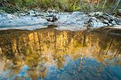 Chattooga River Winter Reflections