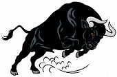 picture of bullfighting  - angry bull - JPG