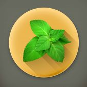 Fresh mint leaves long shadow vector icon