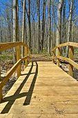 Wood Pedestrian Bridge