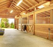 foto of stable horse  - Stable barn with beam ceiling - JPG
