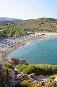 Famous Palm Beach Of Vai, Island Of Crete, Greece