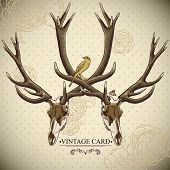 stock photo of deer horn  - Vintage floral background with a deer skull - JPG