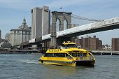 New York City Water Taxi under Brooklyn Bridge