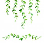 Cute retro branches with green leaves. Watercolor drawing