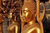 Cuerpo de flanco de latón de Buda