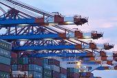Hamburg-walterhof - Container Gantry Cranes In The Evening