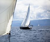 Sailing in the wind through the waves. Luxury yachts.