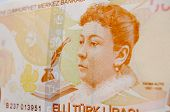 picture of turkish lira  - The Ottoman novelist Fatma Aliye on a Turkish banknote worth fifty Lira - JPG