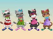 Cute Cats with Fashion Clothes 2