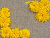 Frame Of Yellow Flowers Against A Background Of Rough Cloth