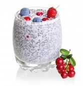 Chia seed pudding and forest berries isolated on white background..
