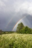 Two rainbows over the field