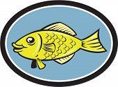 Gourami Fish Side View Oval Cartoon