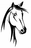 image of mustang  - horse head black and white design  - JPG