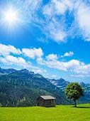 cottage, tree and mountains