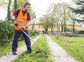 pic of trimmers  - Man Working With Hedge Trimmer in a garden - JPG