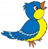 Постер, плакат: Синяя птица