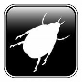 Beetle Button