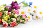 picture of carnation  - Close up of bouquet of colorful carnation and other flowers - JPG
