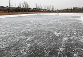 picture of ice hockey goal  - A ice hockey net on an outdoor pond rink - JPG
