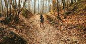 Traveler Woman Walking In Autumn Forest