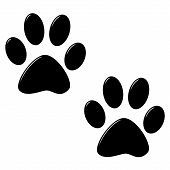 stock photo of paw-print  - 3d cat foot prints isolated in white - JPG