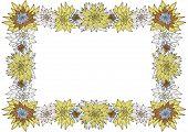 Horizontal White Floral Frame